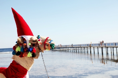 christmas-tours-and-offers-in-Egypt